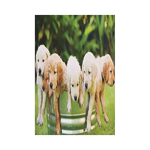 Liumiang Eco-Friendly Manual Custom Garden Flag Demonstration Flag Game Flag,Dog Lover Decor,Adorable Group of Golden Retriever Puppies in The Yard Spring Friendly Family Friend décor (Group Pic Family)