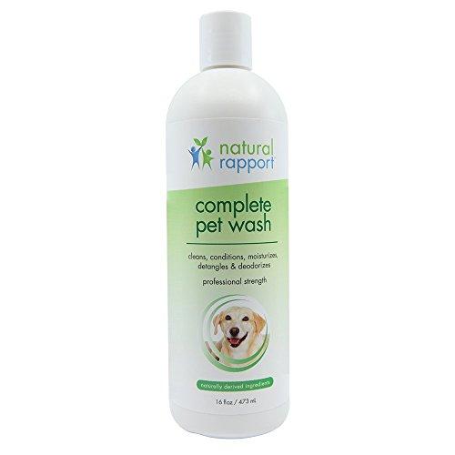 Natural Rapport Dog Shampoo & Conditioner - mit Haferflocken & Aloe - Complete 5-in-1 Natural Pet Wash Reinigt, Bedingungen, Desodoriert, spendet Feuchtigkeit und Entwirrt - Erstaunlich Frischer Geruch tilgt Wet Dog Geruch - 16 Fl Oz (473 ml) Bedingungen 16