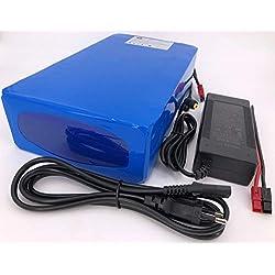 24V 40Ah 960Wh Akkupack Pedelec E-Bike Ebike Scooter Lithium-Ionen Akku Batterie Battery incl. BMS + Ladegerät