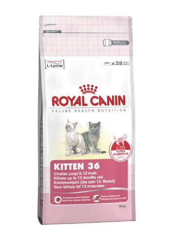 royal-canin-kitten-36-dry-mix-400-g-pack-of-4