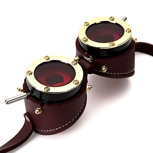WULE-Sunglasses Unisex Halloween Gothic Metal Goggles Dark Windschutzscheibe Steampunk Industrial Vintage Goggles (Farbe, Größe : Free Size)