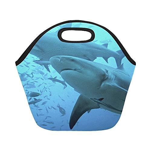 Isolierte Neopren-Lunchpaket Bull Shark Carcharhinus Leucas Bega Lagune Große wiederverwendbare thermische dicke Mittagessen-Tragetaschen für Lunch-Boxen für den Außenbereich, Arbeit, Büro, Schule