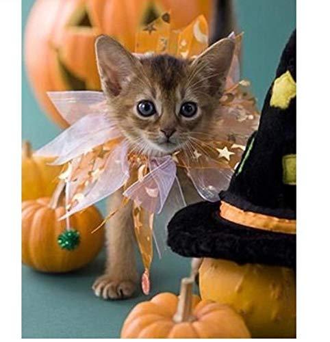 Halloween 5D Diamant Malerei Katze Diamant Stickerei Tiere Bild Von Strass Dekoration Hause 40X50 cm