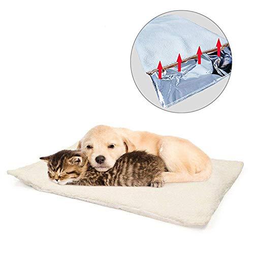 GingerUP Katzendecken Haustierdecke, selbstheizend, waschbar, weiche Wolldecke, selbstwärmend,...