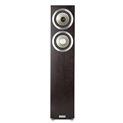"""Tannoy Revolution DC6 T 87W Wood loudspeaker - loudspeakers (Universal, Floor, 2.54 cm (1""""), 15.2 cm (6""""), 15.2 cm (6""""), 2.5 cm) ai migliori prezzi su Polaris Audio Hi Fi"""
