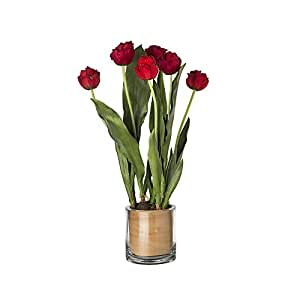 Sia Home Fashion tulipes dans Pot en verre