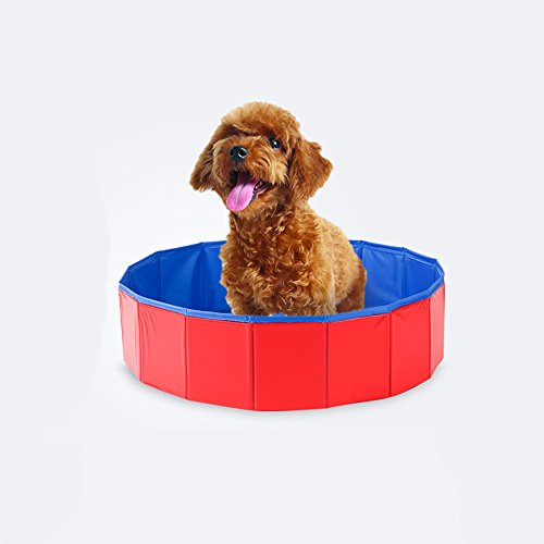Lazzykit Faltbar Schwimmbad Hunde Badewanne Sommer Hausbett Outdoor Hundepool Swimming Pool Schwimmbecken 60x20cm