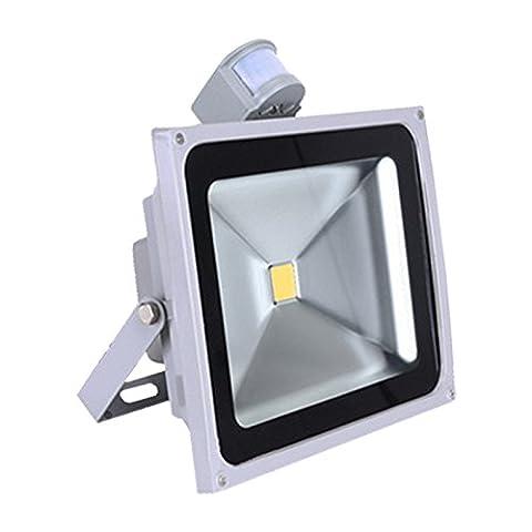 Hengda® 50W Blanc Chaud Projecteur LED détecteur de mouvement IP65