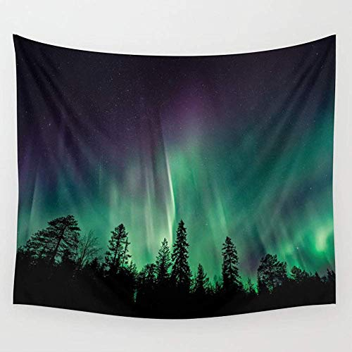 fghjfdjfg Aurora Borealis Heavenly Northern Lights Wall Wandteppiche Hanging Tapestries Wall Art for Living Room Bedroom Dorm Decor 80X60 inches -