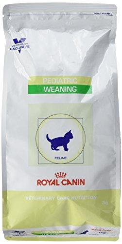 Royal Canin Pediatric Weaning - Trockenfutter für Katzenwelpen - Erste Wachstumsphase