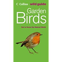 Collins Wild Guide – Garden Birds (Collins Wild Guide S.)