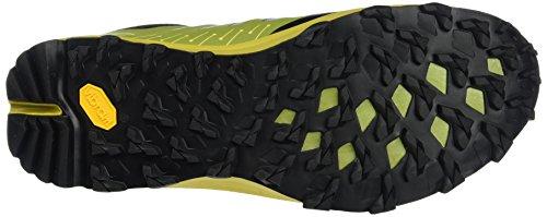 Dynafit Ms Feline Vertical, Chaussures de Trail homme Vert (Gneiss 2454)