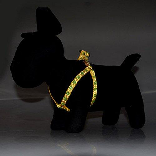 ZY Leinen Hundehalsband fluoreszierende reflektierende Leine Brustgurt Anzug Haustier liefert Teddy Hund Seil Welpen Kette,Q,L