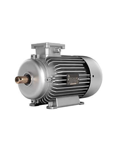 3 Phase 3-Motor, 0,75 kW mit 6 900 B3 1 HP 1000 RPM IE2 IP55 (1 3 Ps Elektromotor)