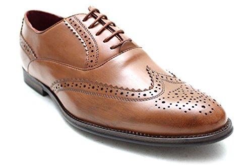 Giovanni , Chaussures à lacets homme Marron