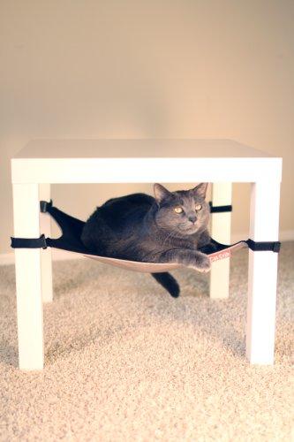 katzeninfo24.de Cat Krippe