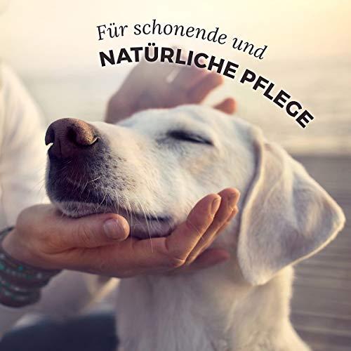 AniForte® Pfotenschutz Balsam 120 ml – Besonderer Schutz & Pflege für Pfoten – Pflegemittel für Hunde und Katzen - 4