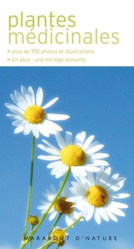 Plantes médicinales : Les reconnaître facilement sans se tromper