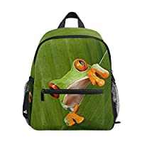 LIANCHENYI Red Eyed Tree Frog Unisex Outdoor Daypacks Bags 2th 3th 4th Grade School Backpack for Kids Boys Girls