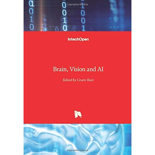 Brain, Vision and AI