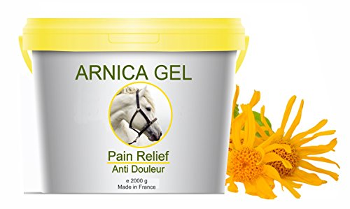 Gel naturale per gli arti del cavallo a base di Arnica Montana 2 x 1000g- Gel all Arnica 100% Naturale - Azione Lenitiva Contusione Ematomi Dolori Muscolari Rinfrescante Sollievo Antinfiammatorio