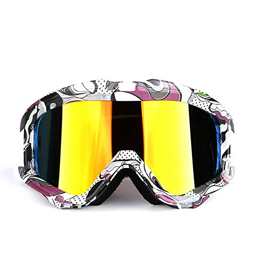 WAJJ Motorradbrille, Snap-on Erwachsenenskispiegel Doppeldecker-Antibeschlagspiegel UV-beständige Großrahmenbrille kann kurzsichtigen Spiegelrahmen TPU Objektiv PC geklebt Werden (Color : F)