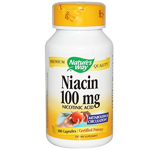 niacin-100-mg-nicotinic-acid-100-capsules-natures-way