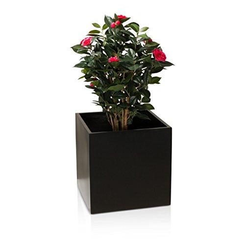 DECORAS Pflanzkübel Blumenkübel CUBO Fiberglas Pflanztopf - Farbe: schwarz matt - robuster, UV-beständiger, wetterfester & frostsicherer Blumentopf für den Garten, Innen- & Außenbereiche