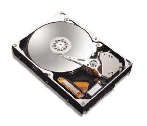 80gb 7200rpm Sata Festplatte (Maxtor 6V080E0 SATA 7200RPM 8MB Cache Festplatte intern 80GB bulk)