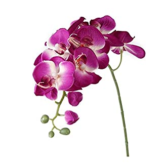 Wilk Flor de la simulación Artificial de la Mariposa Orquídea decoración del hogar (púrpura)