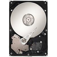 Seagate Cheetah 15K.6 300-GB 300GB SAS - Disco duro (300 GB, 15000 RPM, SAS, 16 MB, Unidad de disco duro)