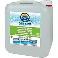 QUIMICAMP Catigene PS (Algicida, Bactericida y Fungicida para picina) - 200105