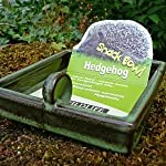 hedgehog care set(bowl/food and info guide) Hedgehog care set(bowl/food and info guide) 416DKjG1YcL