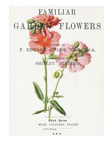 Familiar Garden Flowers: Rock-Rose: Decorative Notebook+Journal (8.5