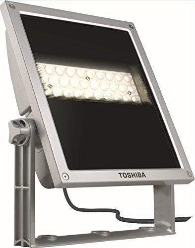 TOSHIBA LED Fassadenstrahler silber 40W 3000K 58x1