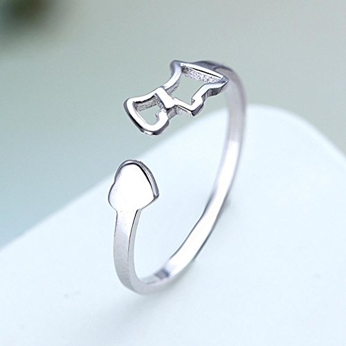 GYJUN Einfache Pony Tail personalisierte ring , silver (Silver Pony-shirt)