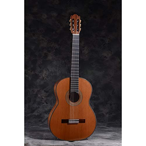 Klassische Gitarre MARTÍNEZ Modell Spanien ES-10C Abdeckung Zeder, alle Größen