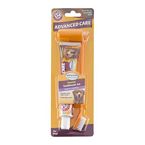 bras-et-marteau-controle-le-tartre-de-boeuf-de-dentifrice-et-brosse