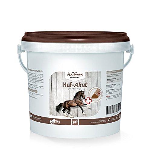 AniForte Huf Akut 1 kg - Naturprodukt für Pferde