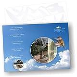 Adesivi anticollisione per uccelli (set di 17 sagome) - Per evitare che gli uccelli urtino il vetro - Colore: Traslucido smerigliato