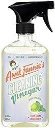 16.9 FL Oz , Fresh Lime Mint : Aunt Fannies Cleaning Vinegar, Lime Mint, 16.9 Fluid Ounce