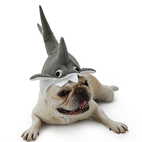Kostüm Klein Hai Hunde - Dreamls Hai-Kostüm für Hunde, Halloween, Party, Hai, aus Plüsch, atmungsaktiv, für kleine und mittelgroße Hunde