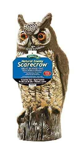 Dalen Products Hand Painted Decoy Life Like Plastic Owl Statue Natural Enemy Scarecrow 40.64 Centimeters