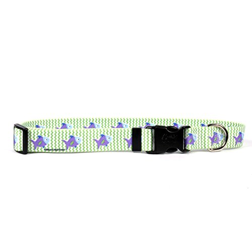 Yellow Dog Design Fisch Tales Halsband 2,5cm breit und passt Hals 18bis 71,1cm groß - Halsband Trainer Dog