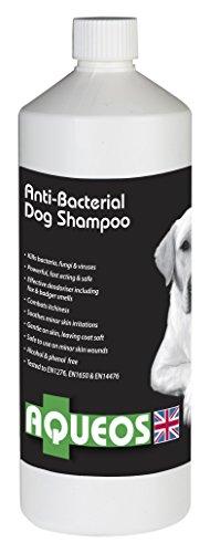 Aqueos anti-microbica e anti-prurito Dog Shampoo, 1 Litro