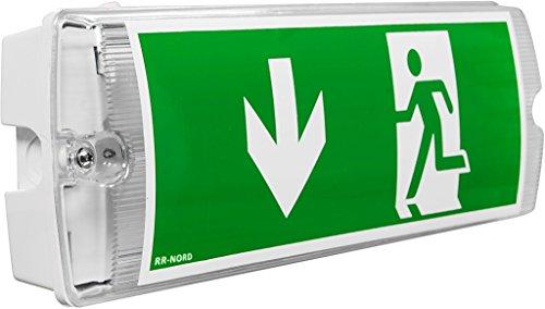 Notleuchte LED IP65 Notbeleuchtung Rettungszeichenleuchte Fluchtwegleuchte Notlicht Brandschutzzeichen Rettungszeichen (Pfeil nach unten)