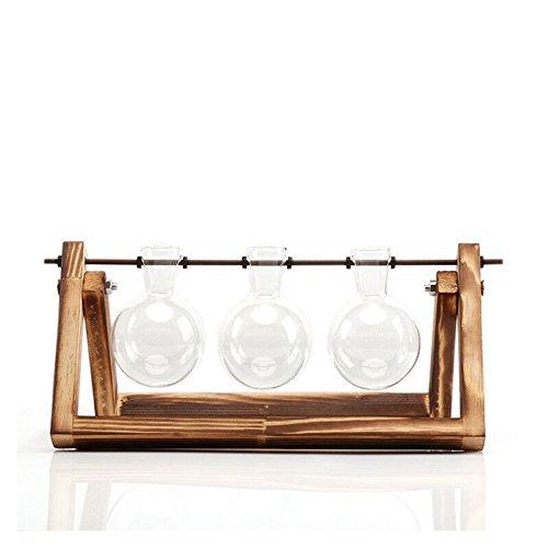 Dayyly Tischdekoration, transparente Vase, Holzständer, Glasvase, Hydrokultur-Terrarium, Tischplatte für Garten/Hochzeit, Deko-Vasen, Three (Niedrige Runde Glas-vase)