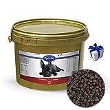 Lyra Pet Dog 1 kg Soft Strauß im Eimer Premium Hundefutter glutenfrei + Geschenk