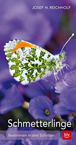 Schmetterlinge: Bestimmen in drei Schritten (BLV)