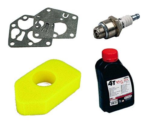 gardexx-vergaser-membrane-luftfilter-zundkerze-motorol-fur-briggsstratton-quattro